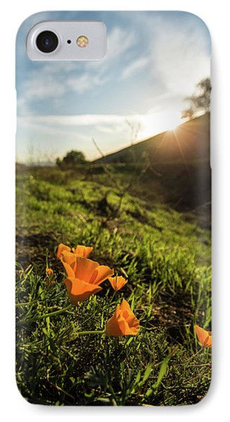 Early Poppies IPhone Case