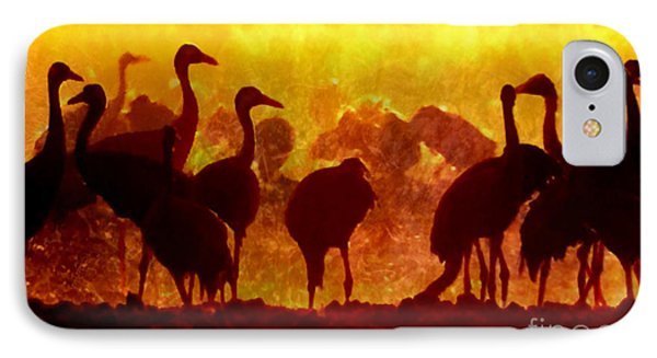 Early Risers  IPhone Case by Tlynn Brentnall