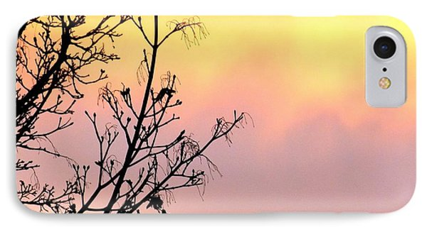 IPhone Case featuring the photograph Early Spring Sunset by Will Borden