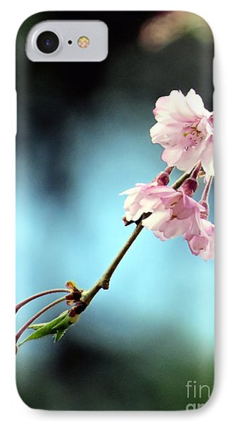 Early Spring Weeping Cherry  IPhone Case by Janice Drew