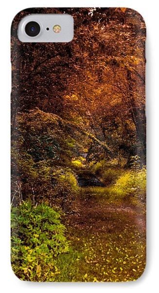 Earth Tones In A Illinois Woods Phone Case by Thomas Woolworth