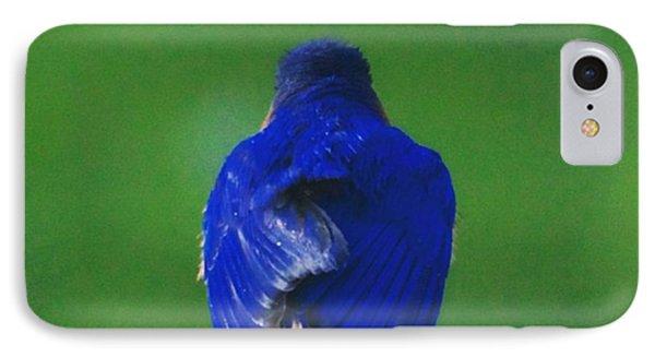 Eastern Bluebird. #birds #birding IPhone Case by Heidi Hermes