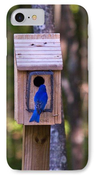 Eastern Bluebird Entering Home Phone Case by Douglas Barnett