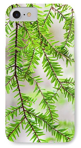 IPhone 7 Case featuring the photograph Eastern Hemlock Tree Abstract by Christina Rollo