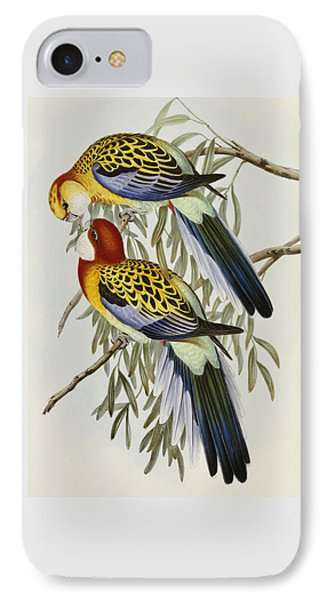 Eastern Rosella IPhone 7 Case by John Gould