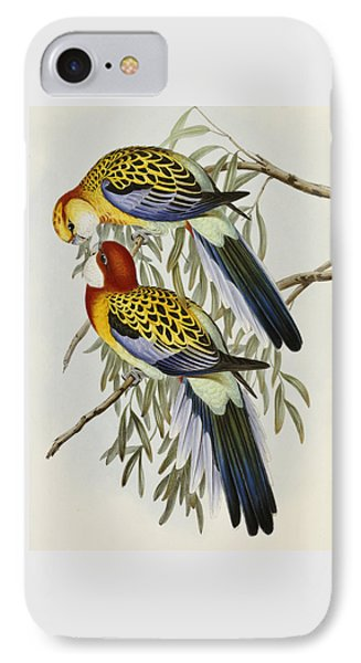 Eastern Rosella IPhone Case by John Gould