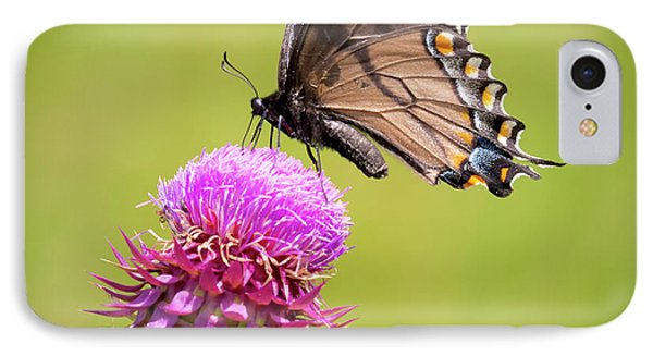 IPhone Case featuring the photograph Eastern Tiger Swallowtail Dark Form  by Ricky L Jones