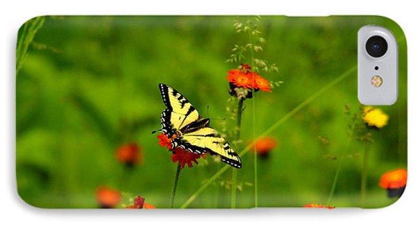 Eastern Tiger Swallowtail  IPhone Case by Debbie Oppermann