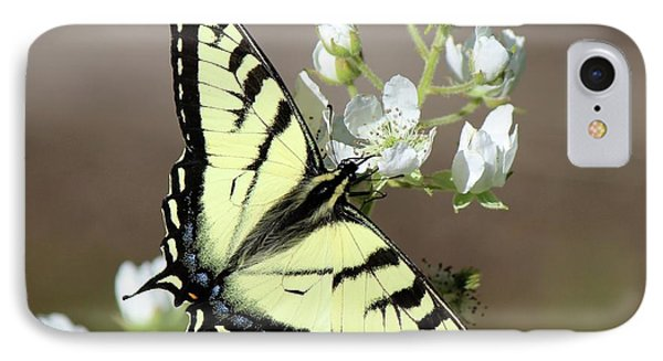 Eastern Tiger Swallowtail Female IPhone Case