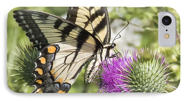 Eastern Tiger Swallowtail Phone Case by Ricky L Jones