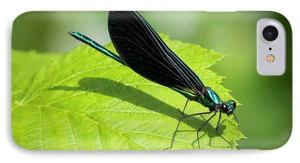 IPhone Case featuring the photograph Ebony Jewelwing by Ricky L Jones