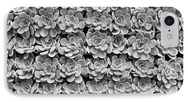 IPhone Case featuring the photograph Echeveria by Tim Gainey