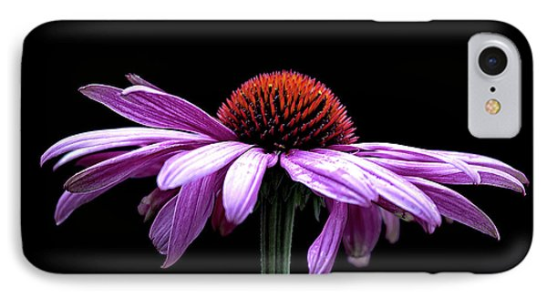 Echinacea IPhone Case by Sheldon Bilsker