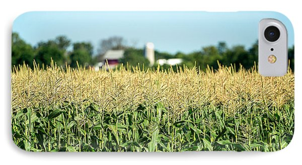 Edge Of Field Of Corn IPhone Case by Todd Klassy