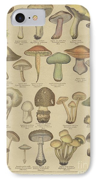 Edible And Poisonous Mushrooms IPhone 7 Case by French School