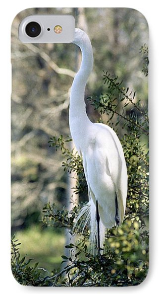 Egret 2 Phone Case by Michael Peychich