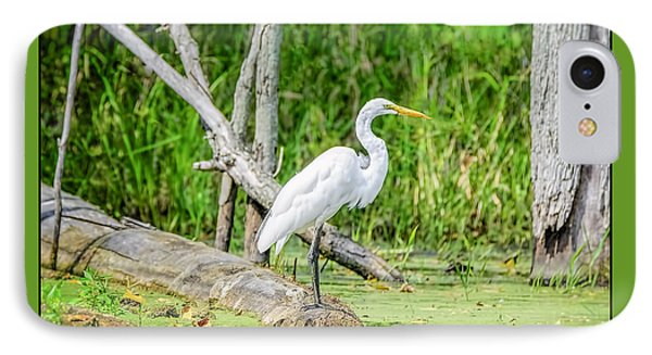 Egret At Seven Ponds IPhone Case