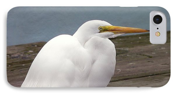 Egret On The Dock Phone Case by Al Powell Photography USA