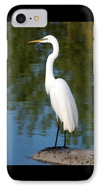 Egret Standing IPhone Case
