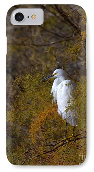 Egret Surrounded By Golden Leaves IPhone Case by Ruth Jolly