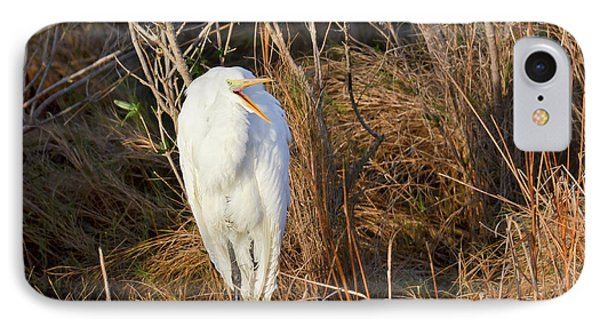 IPhone Case featuring the photograph Egret With Something To Say by George Randy Bass
