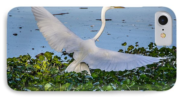 Egret With Wings Spread IPhone Case by Randy Bayne