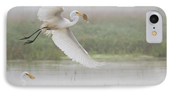 Egrets Fish IPhone Case by Kelly Marquardt