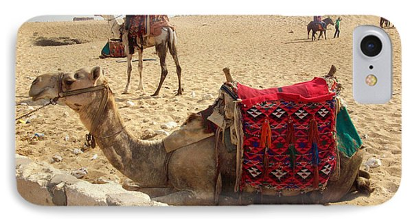 Egypt - Camel Getting Ready For The Ride Phone Case by Munir Alawi