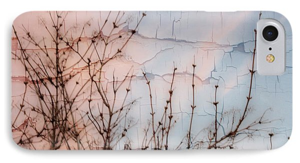Elder Branches Silhouette Phone Case by Sandra Foster