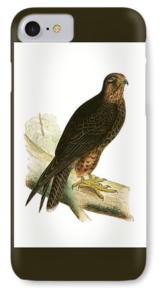 Eleonora Falcon IPhone Case by English School