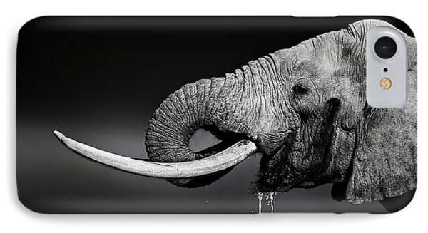 Elephant Bull Drinking Water IPhone Case by Johan Swanepoel