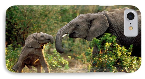 Elephant Calf And Mother Playing IPhone Case by Michel and Christine Denis-Huot