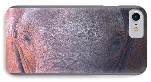 Elephant Ears IPhone Case by Greg Slocum