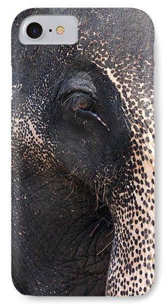 Elephant IPhone Case by Jane Rix