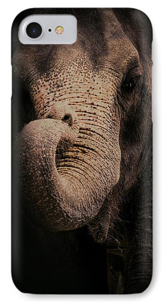 IPhone Case featuring the photograph Elephant by Jim Vance