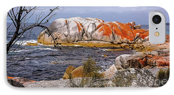 Elephant Rock - Bay Of Fires IPhone Case by Lexa Harpell