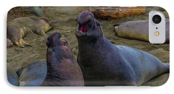 Elephant Seals Fighting On The Beach IPhone Case