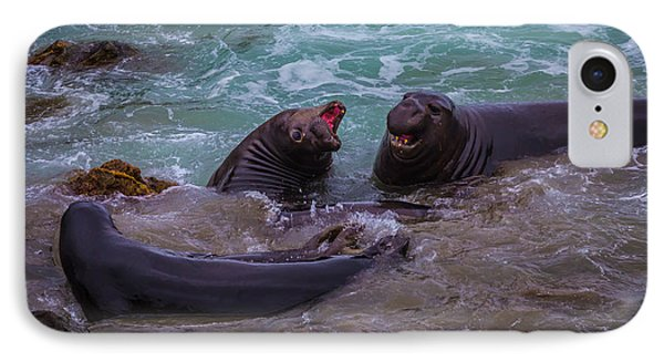 Elephant Seals In The Surf IPhone Case