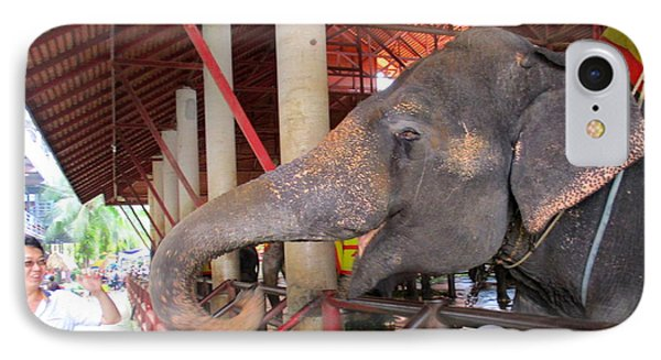 Elephant Show 1 IPhone Case by Randall Weidner