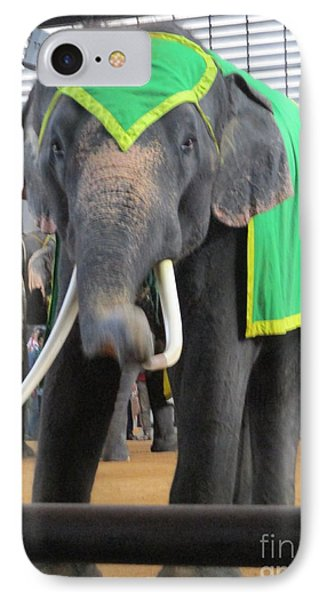 Elephant Show 4 IPhone Case by Randall Weidner