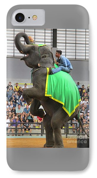 Elephant Show 6 IPhone Case by Randall Weidner