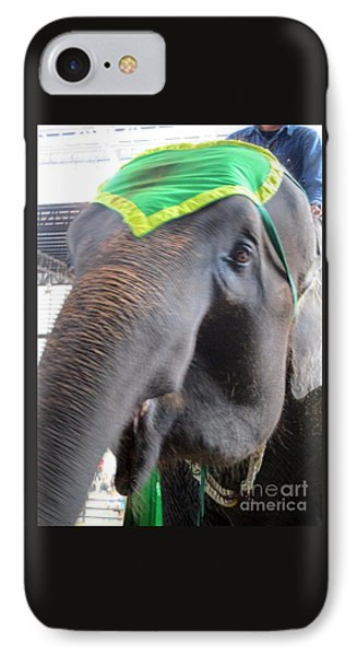 Elephant Show 8 IPhone Case by Randall Weidner