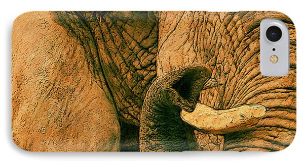 Elephant Study In Texture IPhone Case