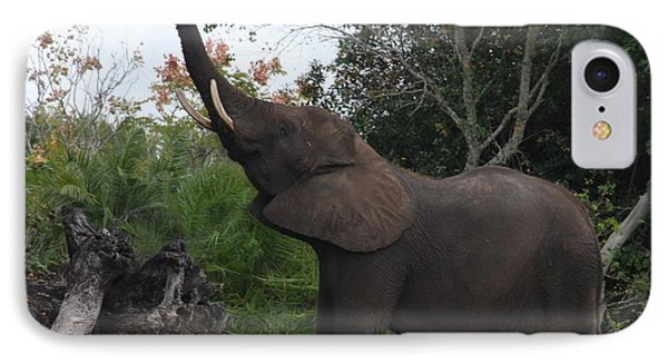 IPhone Case featuring the photograph Elephant Time by Vadim Levin