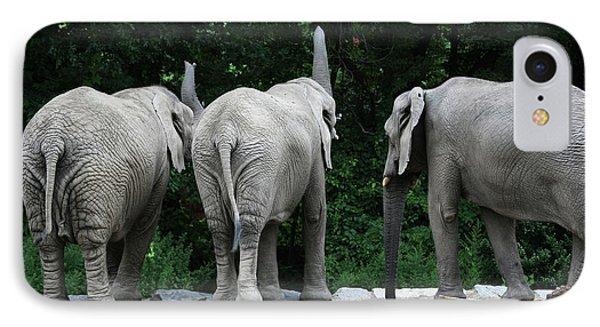 Elephant Trio Phone Case by Karol Livote