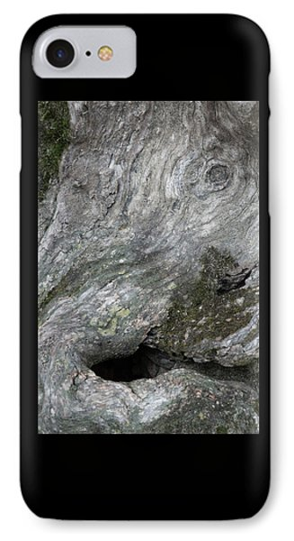 IPhone Case featuring the photograph Elephant Trunk by Dale Kincaid
