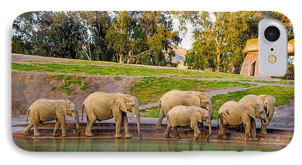 Elephants Are Family IPhone Case by April Reppucci
