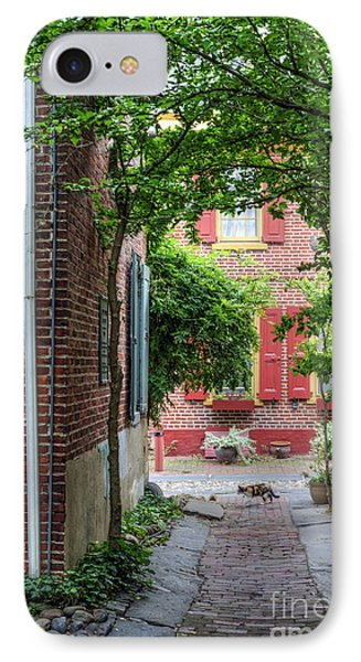 Calico Alley  IPhone Case by David Zanzinger