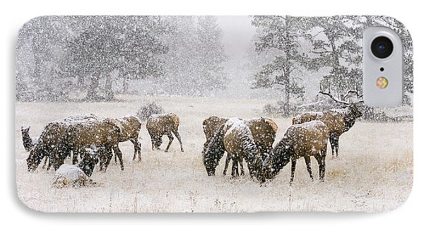 Elk In A Snow Storm - 1135 IPhone Case