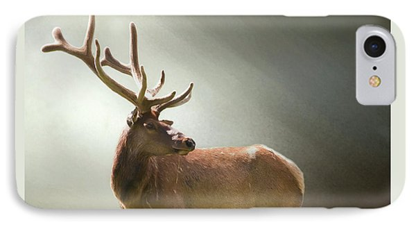 IPhone Case featuring the photograph Elk In Suns Rays by David and Carol Kelly